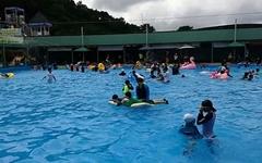 집 근처 수영장에서 여름 휴가를 보내다