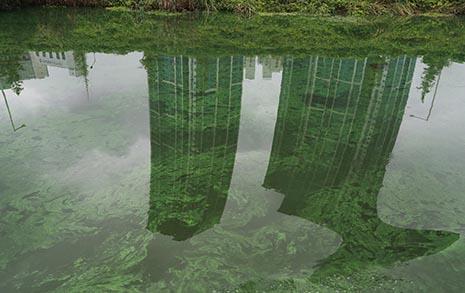 미국은 양치질도 못하게 하는데... 낙동강이 위험하다
