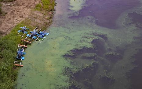 홍준표의 '쪼다' 선동, 부산 수돗물이 위험하다