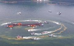 남해안 적조 피해 속출, 경남권 해역만 188만 마리 폐사
