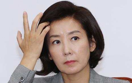 """'나경원 딸' 대학 감사보고서 """"성적 향상이 극단적"""""""