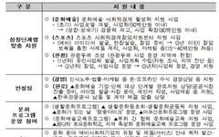 문화체육관광 분야 예비사회적기업 발굴, 특화지원