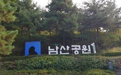 [사진] 노랗고 빨갛게 단풍 드는 남산공원 백범광장
