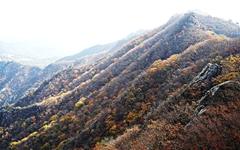 [사진] 단풍이 만든 계룡산의 가을 풍경