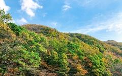 사방이 가을가을, 가을로 무장한 무장산