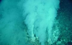 """""""지구 최초 세포, 생명체 해저에서 탄생했을 확률 높아"""""""