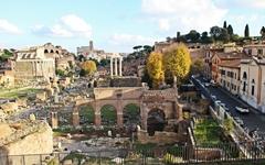 로마 제국의 흥망성쇠를 한눈에 볼 수 있는 곳
