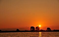 [사진] 충남 아산 곡교천의 아름다운 노을