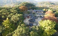 조선의 왕이 사랑한 '최초의 사립대학'을 찾다