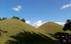 녹색 왕릉과 파란 하늘이 잘 어울리는 경주 대릉원