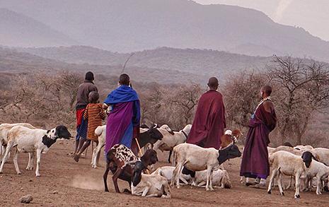 인류 역사의 원형, 마사이족을 만나다