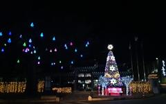 [사진] 다가오는 성탄절, 불 밝히는 성탄트리