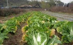 농사 잘 되는 흙, 이렇게 하면 된다