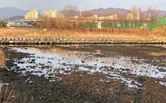 겨울가뭄, 동해시민의 젖줄 '전천' 바닥 드러내