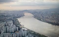 40대 서울 토박이, 제주도에서 향수병에 걸리다