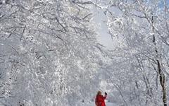 [사진] 하얗게 변한 세상... 겨울왕국이 따로 없네