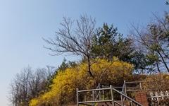 [사진] 여행 자제하는 대신 동네 공원 산책 어떠세요