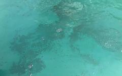부산항 매연으로 해양 오염시킨 선박 검거