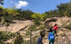 [사진] 싱그러운 4월의 어느 날 아차산의 신록
