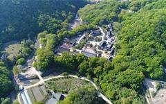경주 기림사 목탑지, 복원해야만 하는 이유