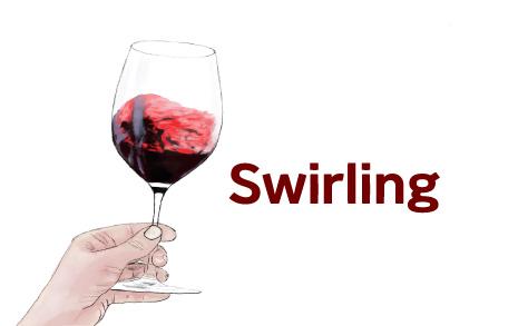 와인을 빙빙 돌려 마시면 벌어지는 일