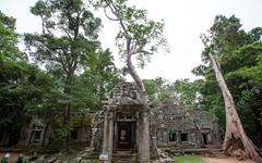불신의 시대, '불멸'은 없다란 걸 알게 한 코로나19