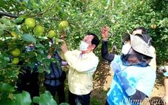 고우현 경북도의장 등 태풍피해 농가 찾아 지원활동