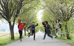 10월에는 '용문산은행나무길'을 걸어보세요