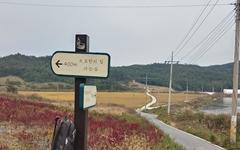 한국의 '섬티아고', 홀로 조용히 걷는 순례길