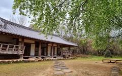 [사진] 귀룽나무 꽃향기가 가득한 구례 쌍산재