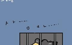 [만평] 이쯤 되면 '분기별 희망고문'
