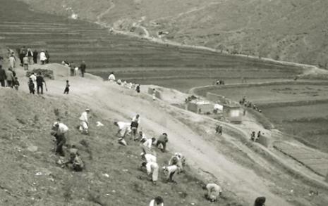화장실도 없는 곳에 강제이주... 사당동 철거민촌 역사