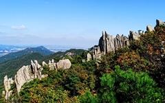 무산된 용봉산 구름다리·모노레일... 용역비만 낭비?