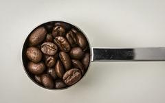 나만의 시그니처 커피 만드는 4가지 방법