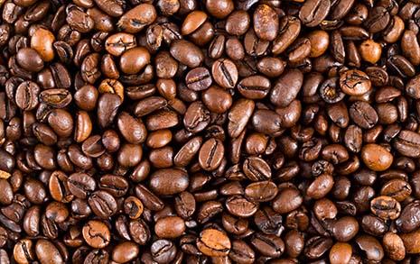 정확히 60개 커피콩 갈아 커피 한 잔 마신 베토벤
