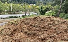 멧돼지떼 습격에 쑥대밭 된 백제 돌방무덤 응급조치