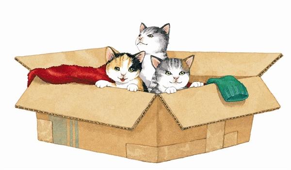 그림책으로 탄생한 '한강맨션 고양이 억류사건'