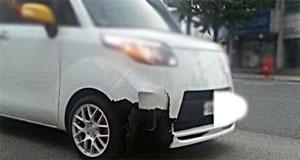 '튜닝' 자동차가 개를 치었다, 그 결과는...