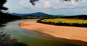 흐르지 않는 강은 재앙이다