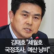 """김태호 """"세월호 국조 결국 예산 낭비"""""""