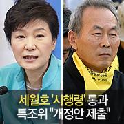 """세월호 '정부 시행령' 통과 특조위 """"개정안 제출하겠다"""""""