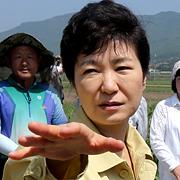 '돈타령' 박근혜 정부에 '메르스 로또' 권한다