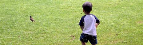 어린이날, 뭘 해야 할지 고민이신가요?