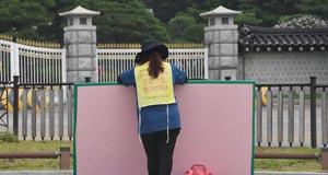 청와대 분수대광장 '민심의 광장'이 되다
