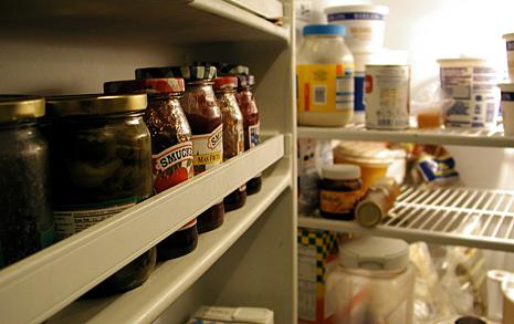 냉장고 없인 못살아 vs.  냉장고 없이도 괜찮아