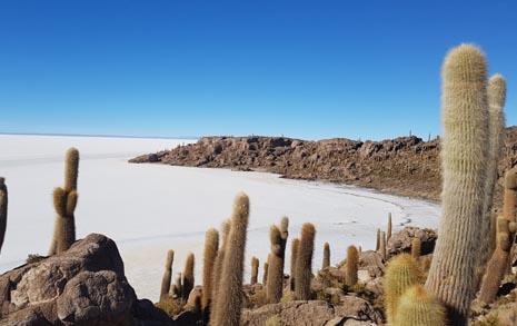 '우유니 소금사막'을  사랑할 수밖에 없는 이유