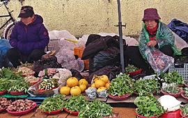 봄 향기 만나는 양양시장과 남대천