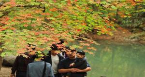 '가을 물들기 시작'한 지리산,  이번 주부터 단풍 절정