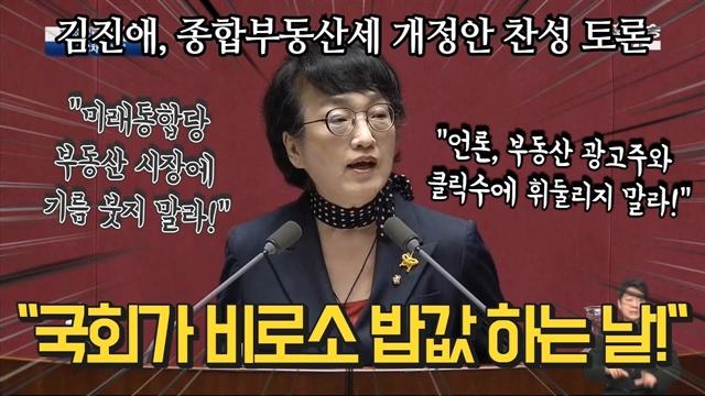 """종부세 개정안 찬성 김진애 """"국회가 비로소 밥값 하는 날!"""""""