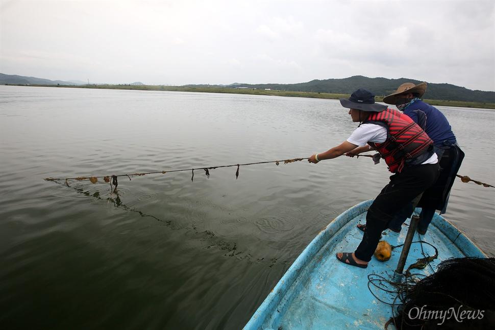 24일 오후 낙동강 구미구간에서 어부가 그물을 끌어올리자 큰빗이끼벌레가 올라오고 있다.